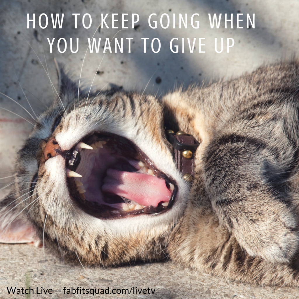 how to keep going when you want to give up